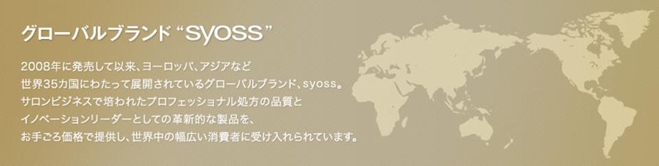 2008年に発売して以来、ヨーロッパ、アジアなど世界35カ国にわたって展開されているグローバルブランド、syoss。サロンビジネスで培われたプロフェッショナル処方の品質とイノベーションリーダーとしての革新的な製品を、お手ごろ価格で提供し、世界中の幅広い消費者に受け入れられています。